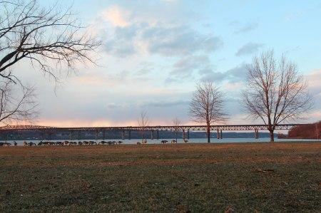 Beacon, NY Geese by Keri Valentine